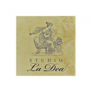 Klient STUDIO La Dea, který využívá služeb individuálního vzdělávání v anglickém jazyce pro jednotlivce